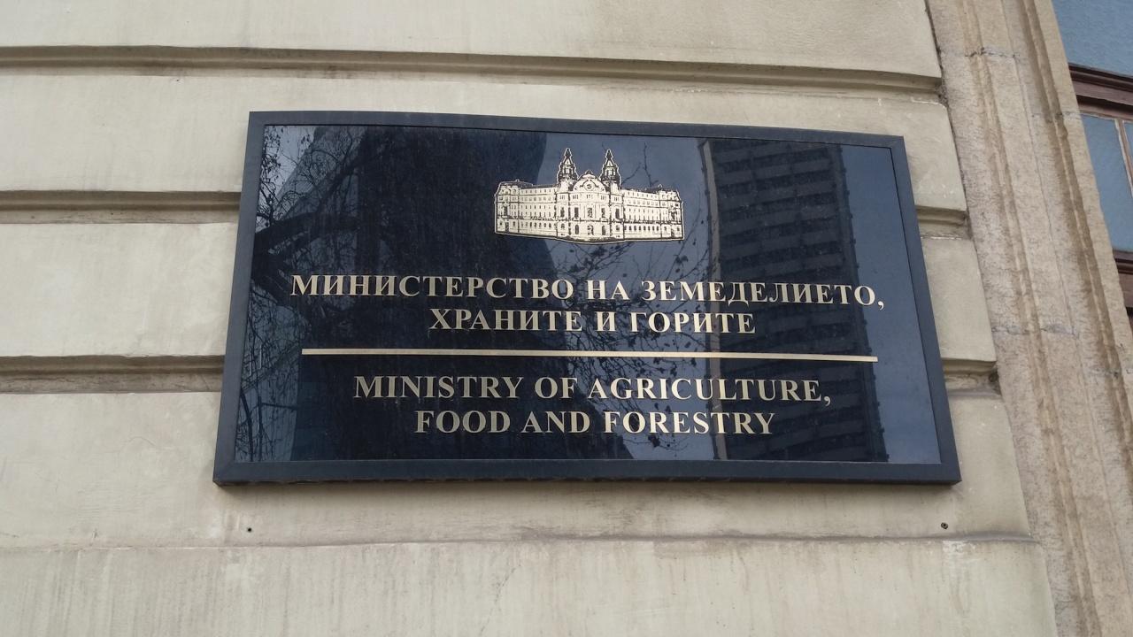 Явор Гечев е назначен за заместник-министър на земеделието, храните и горите