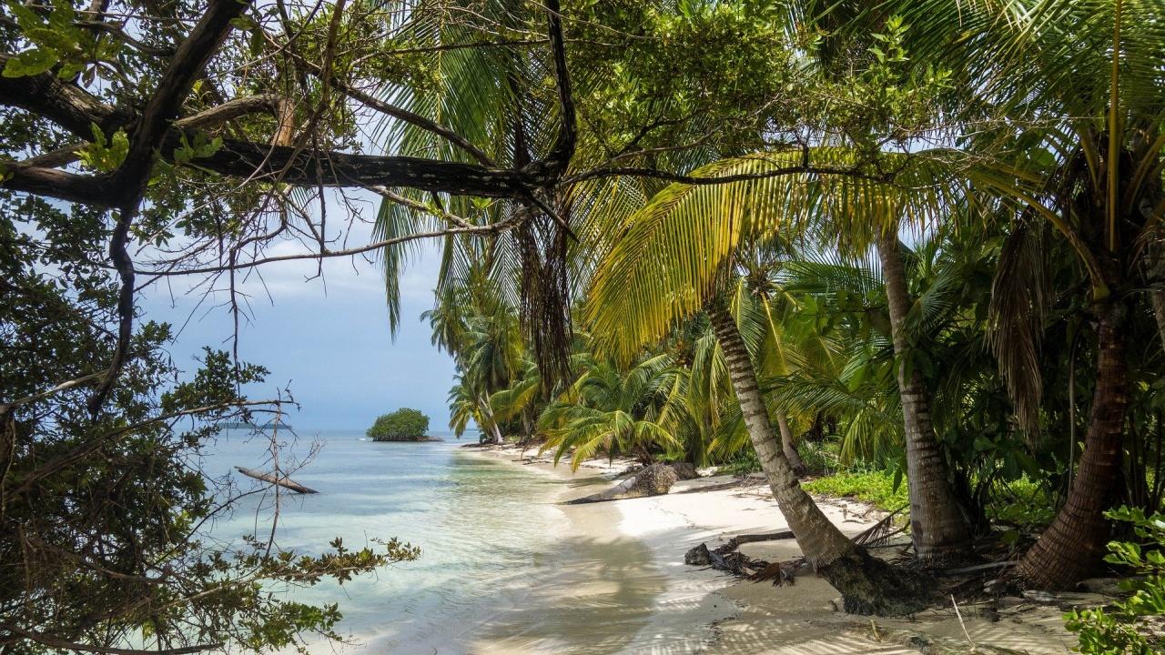 Клиенти на туристическа фирма търсят парите си от отложени екскурзиипо време на COVID - пандемията