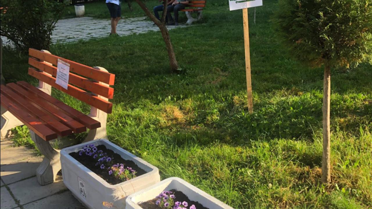 """""""Красно село"""": Доброволци косиха трева и засадиха цветя, кметицата им прати полиция"""
