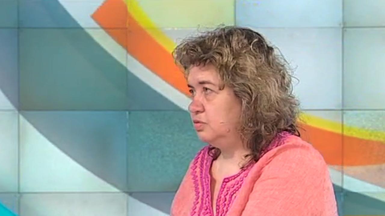 """Доц. Киселова: Депутатите не могат да си позволят """"избори до дупка"""""""