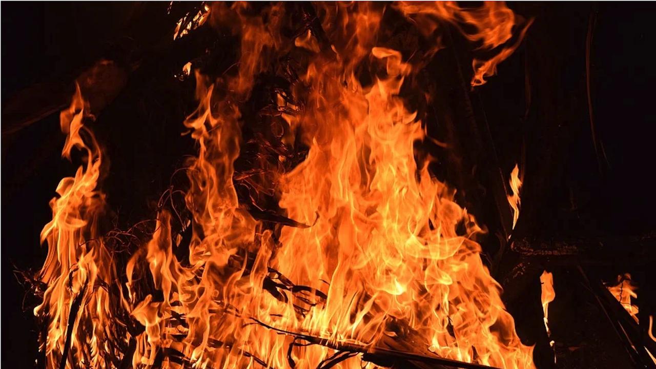 Пожарникари се борят с горски пожар на остров Крит