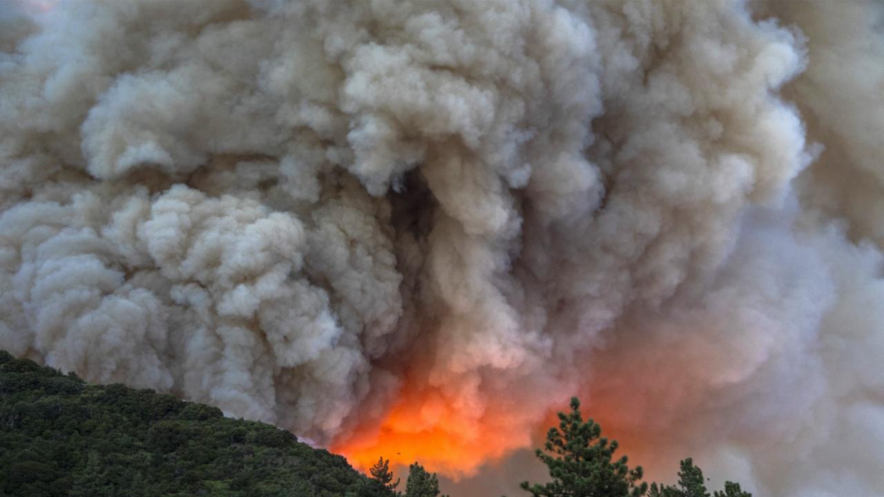 Хиляди пожарникари се борят с горски пожари в Русия