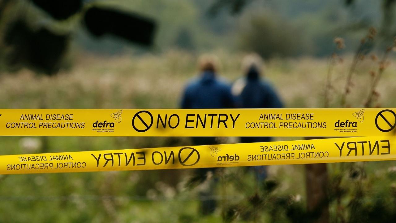 Алпинисти участват в повторния оглед на мястото, където е било открито мъртво 15-годишно момиче във Велико Търново