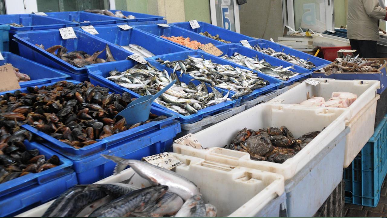 Голямо количество риба, месо, колбаси и сирене с изтекъл срок на годност са открити при акция в Пазарджишко