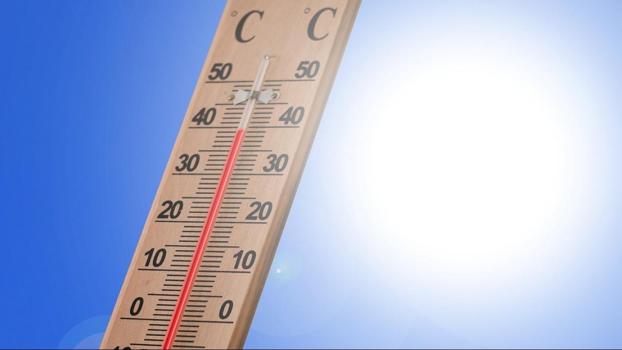 В Русе са отчетени 35,7 градуса, а от общината раздават вода на пешеходци