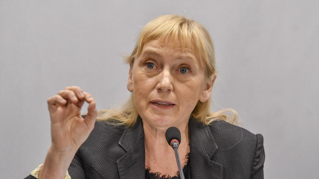 Елена Йончева ще води мониторинговата група на ЕП в България