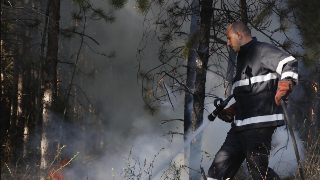 Пожарът в Сакар планина е овладян