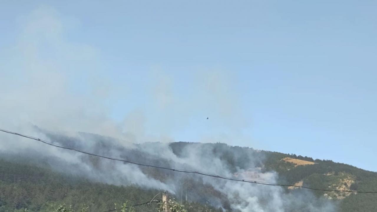 Под контрол е пожарът край Твърдица