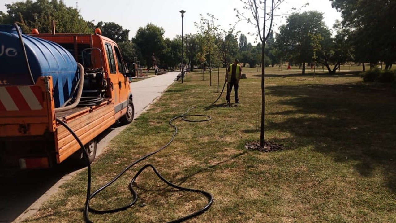 """Дирекция """"Аварийна помощ и превенция"""" подпомага поливането на градските дървета"""