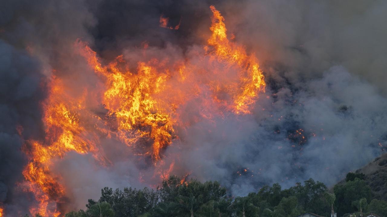 Черна гора пламна