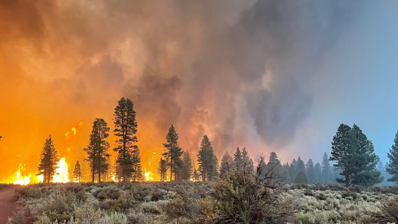 Горски пожари бушуват пети ден в северозападна Финландия