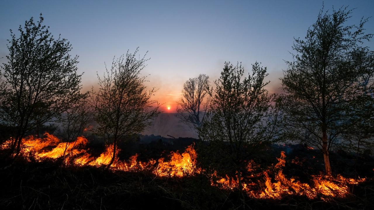 Пожарът край Перник е ограничен в по-голямата си част