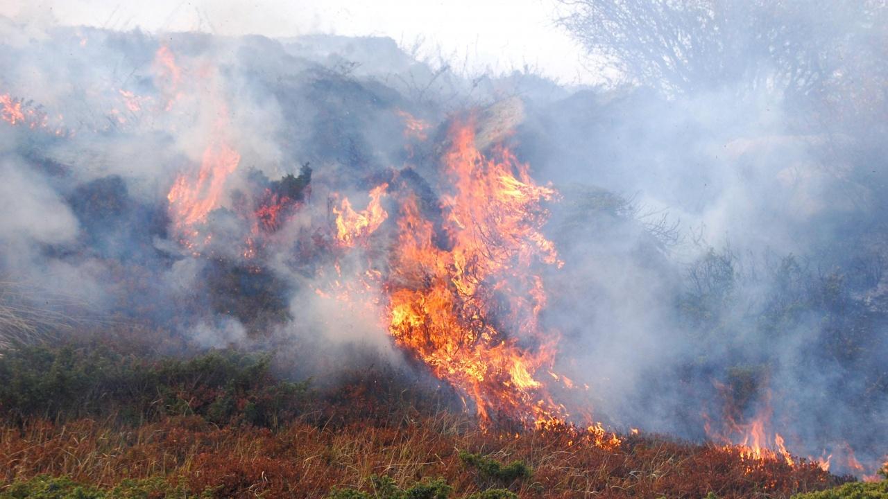Екстремален индекс за пожароопасност в 15 области в страната