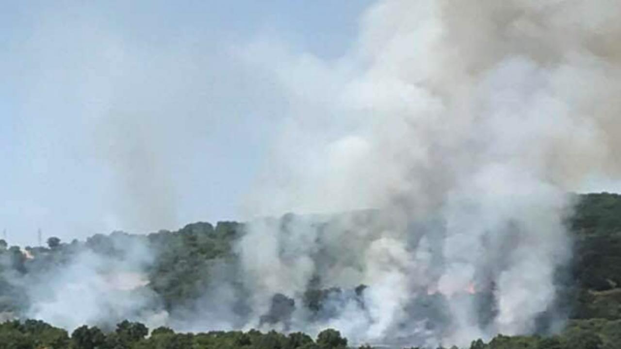 Пожар възникна край с. Свирачи