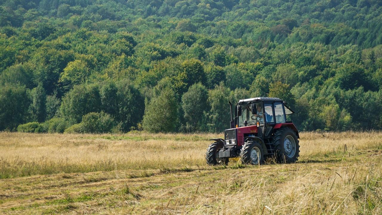 До 20 август се забранява поддържането на постоянно затревените площи и обработваемите земи в страната