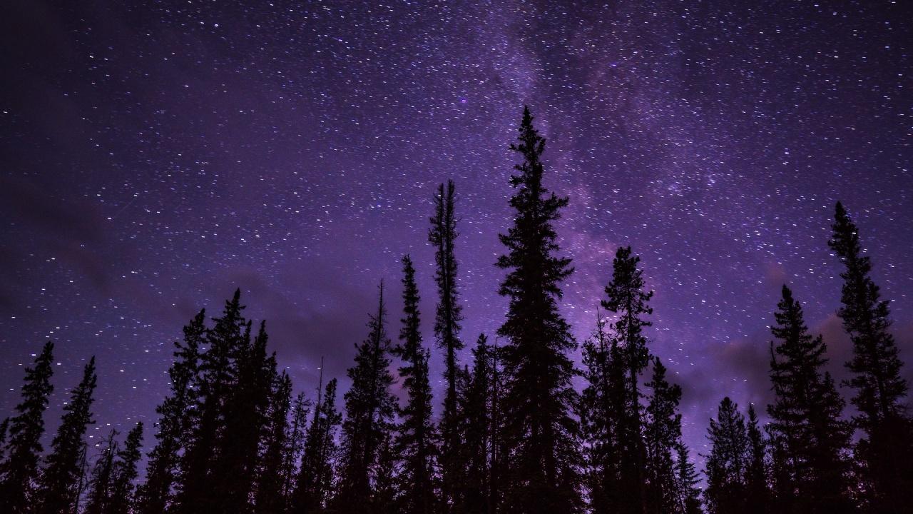Нощ под звездното небе на обсерваторията в Рожен се организира на 14 август