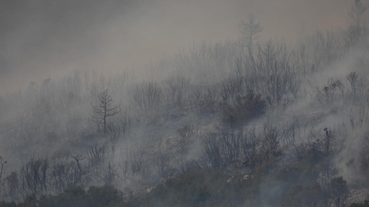 Горски предупреждават за риск от пожари в жегата в Централния Север