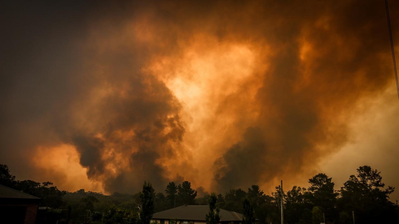 Хиляди хора са евакуирани заради горски пожари край Френската Ривиера