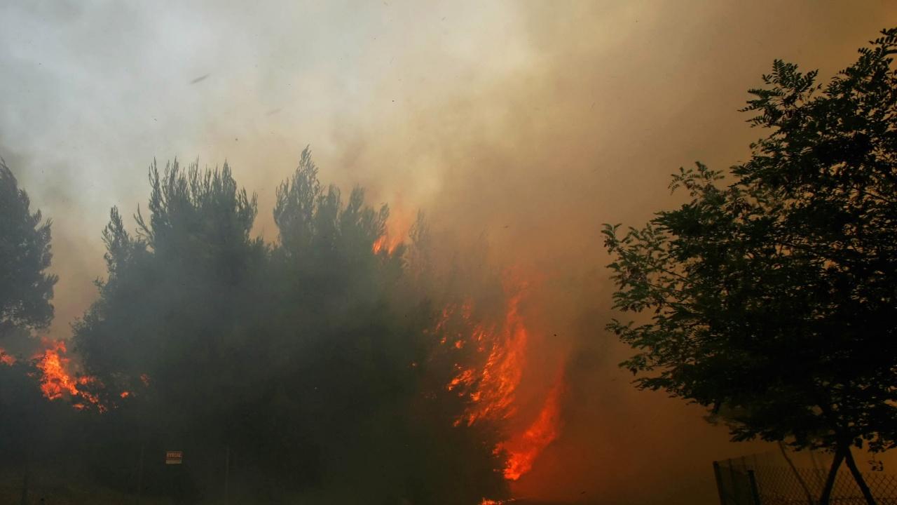"""Вертолет """"Кугар"""" на Военновъздушните сили се включи в гасенето на пожара над село Югово"""