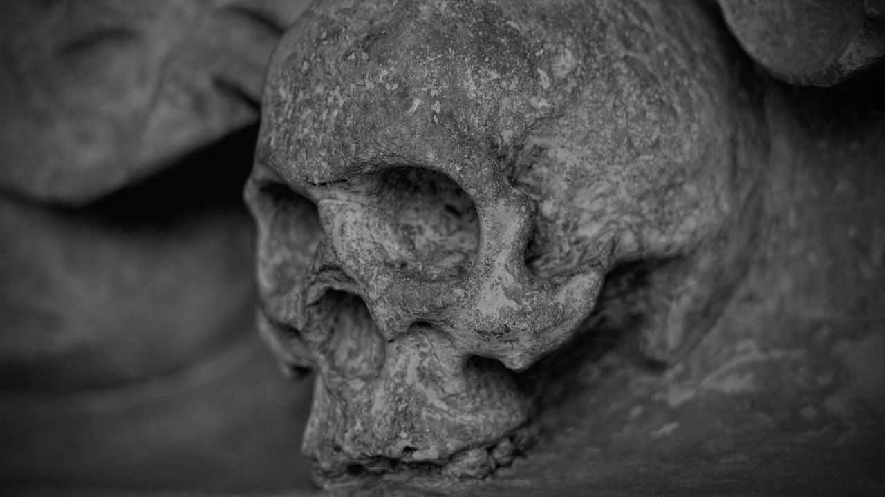 ДНК от скелет, намерен в Индонезия, разкрива неизвестна човешка група