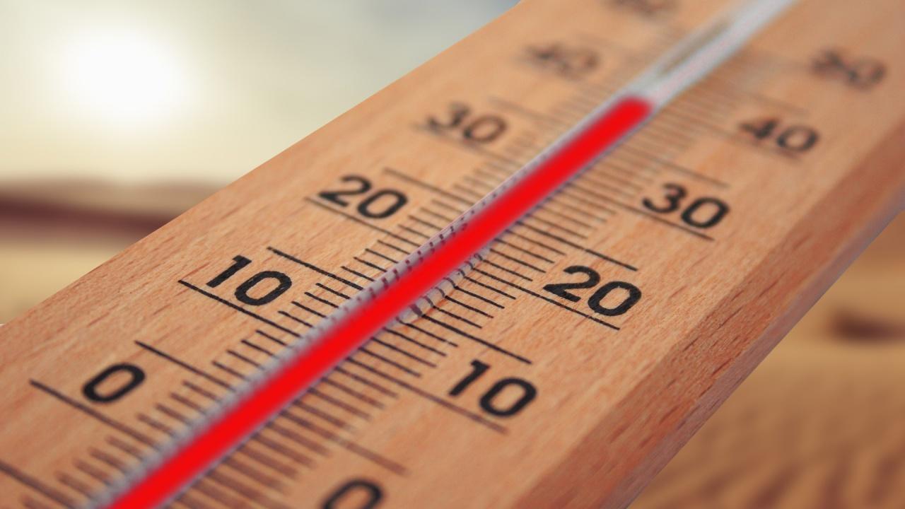 Учени: Това лято е било най-горещото в Европа