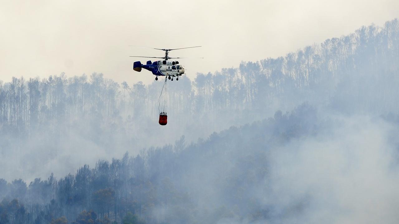 Овладяха опустошителния пожар в Южна Испания