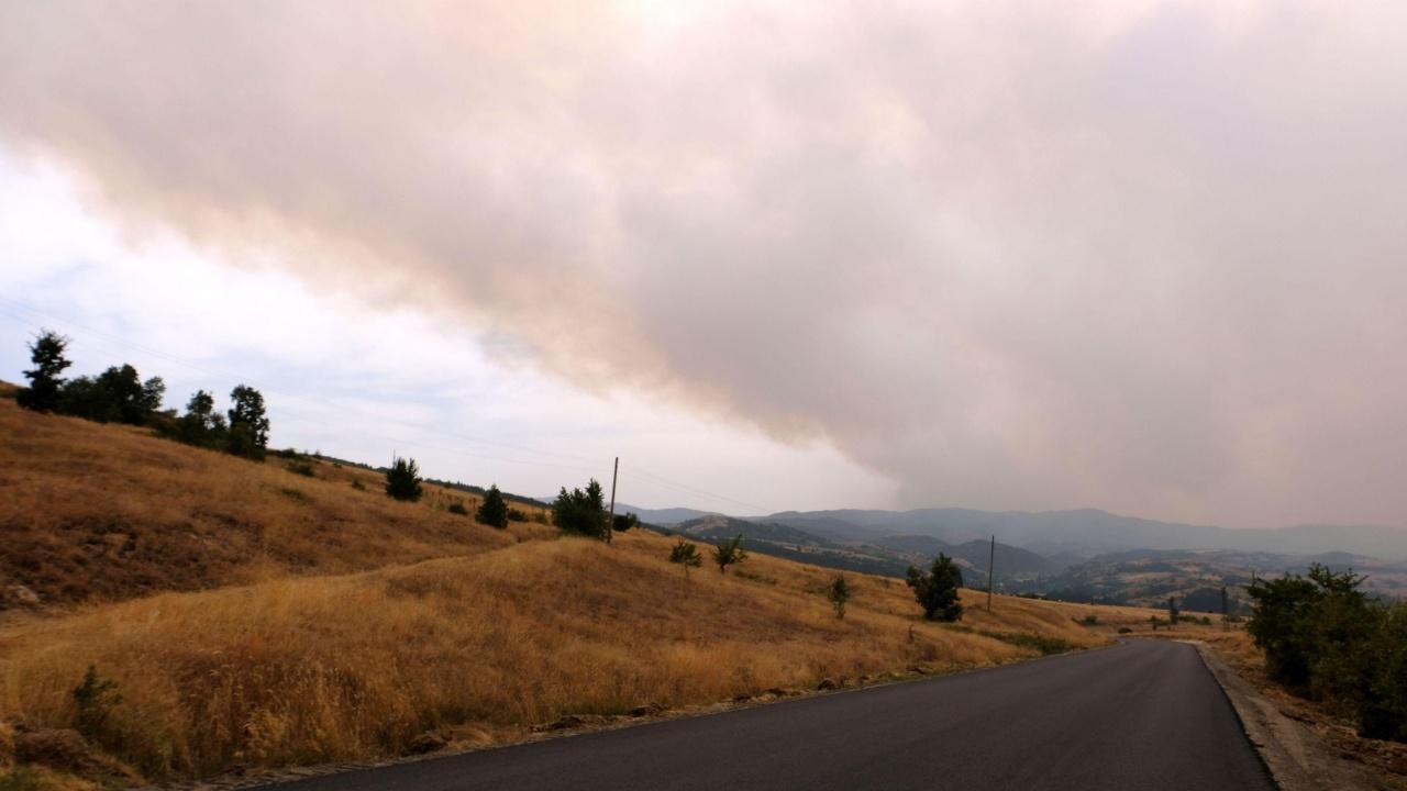 Пожар избухнав местността Бетоловото над Разлог