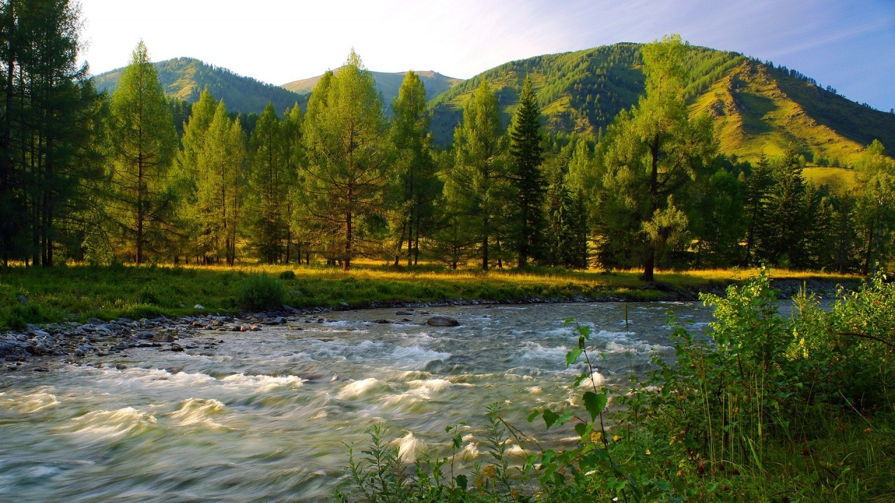 Кметът на Пловдив поиска от държавата пари за почистване коритото на река Марица