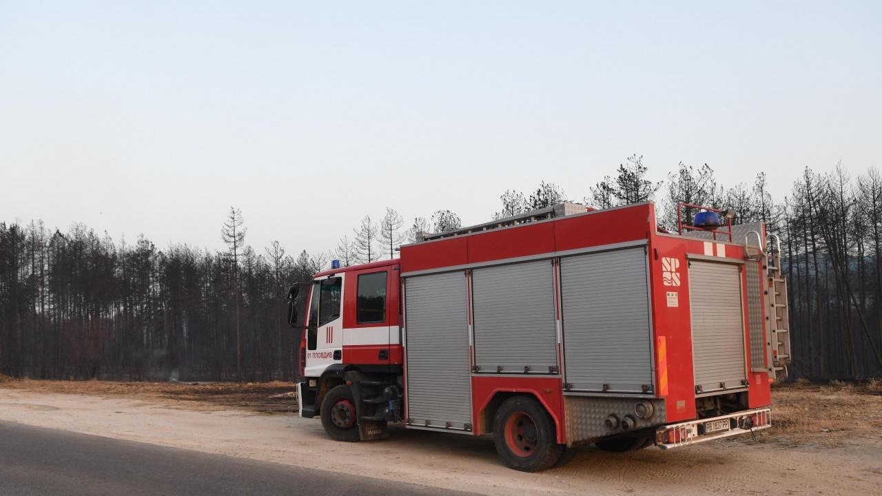 """Пожар унищожи 95 процента от растителността на блатото """"Кайкуша"""""""