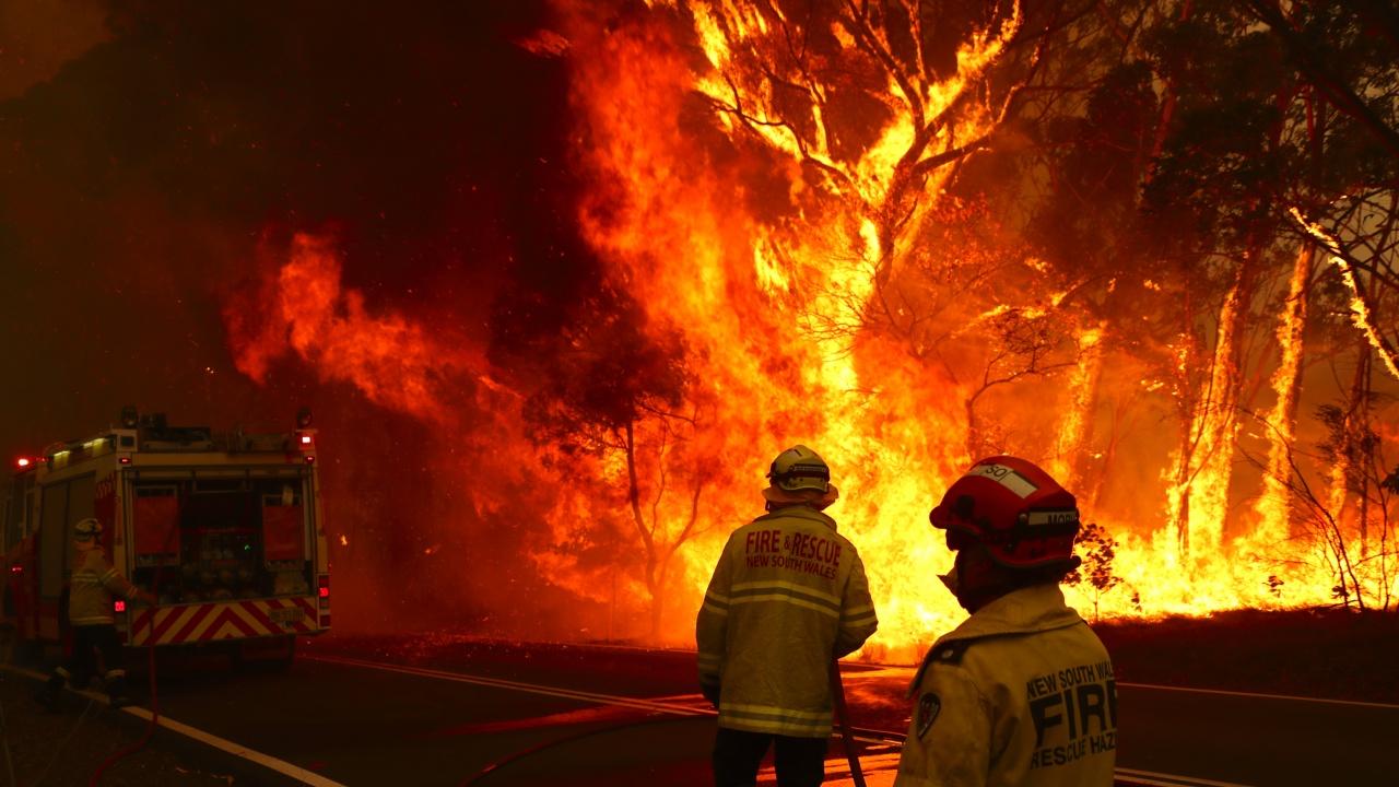 Пожарите в северното полукълбо са причинили рекордни въглеродни емисии