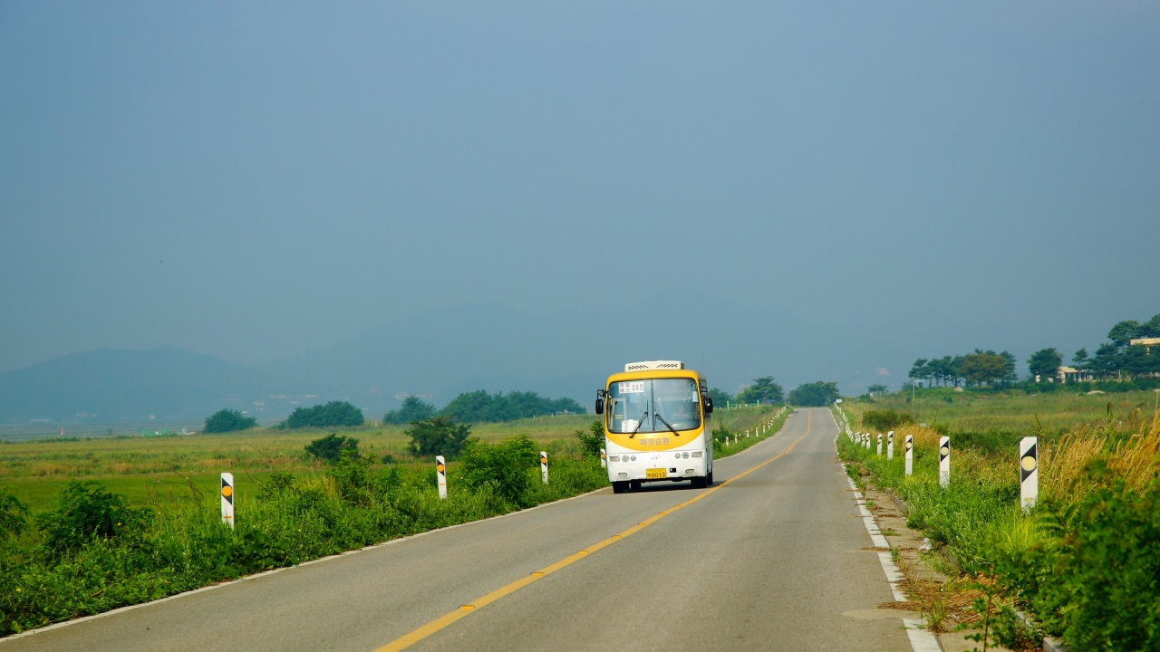 Над 80 общини у нас вече нямат автобусни превози, 150 фирми са прекратили дейността си за година
