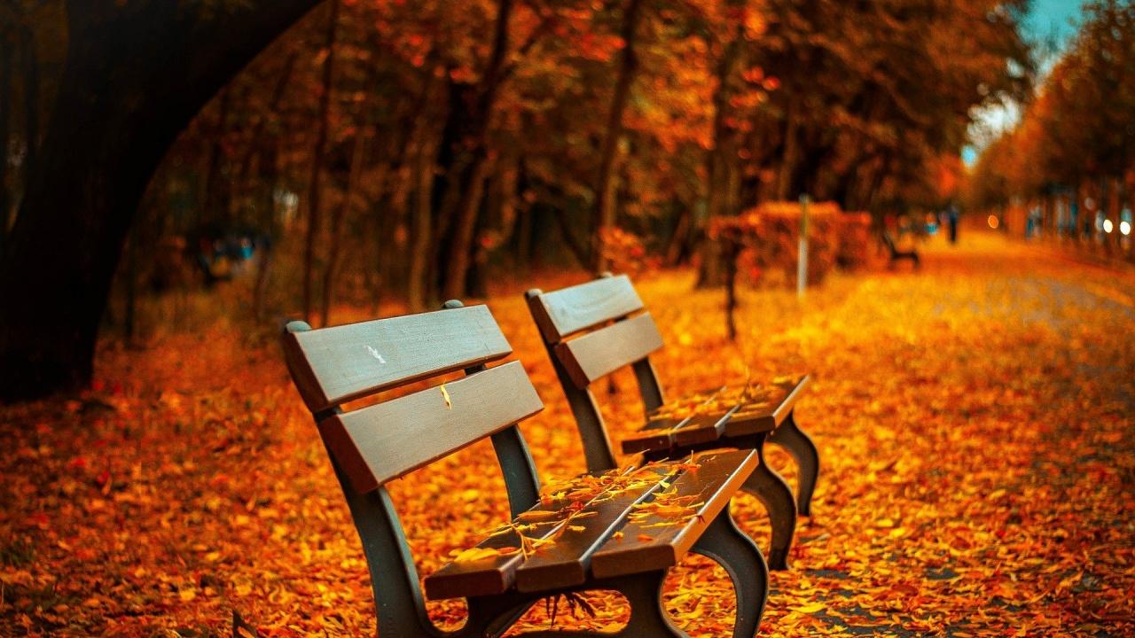 Какво време ни очаква в началото на октомври?