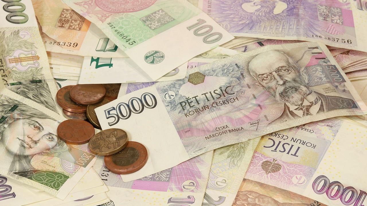 Чехия замрази за 5 години повишаването на заплатите на висшите държавници