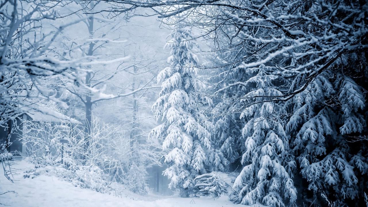 Сняг заваля в планините
