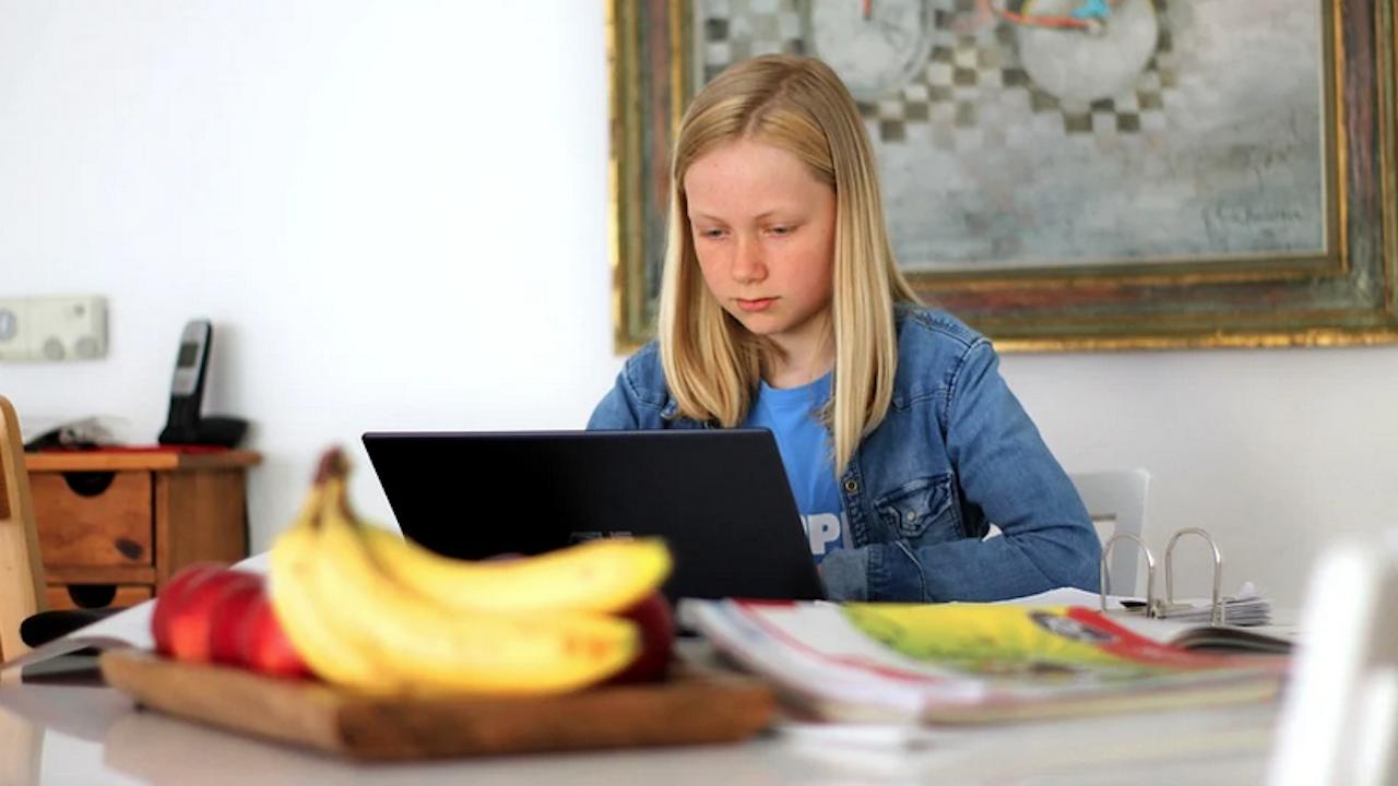 Ограничителни мерки се въвеждат в училищата в област Добрич