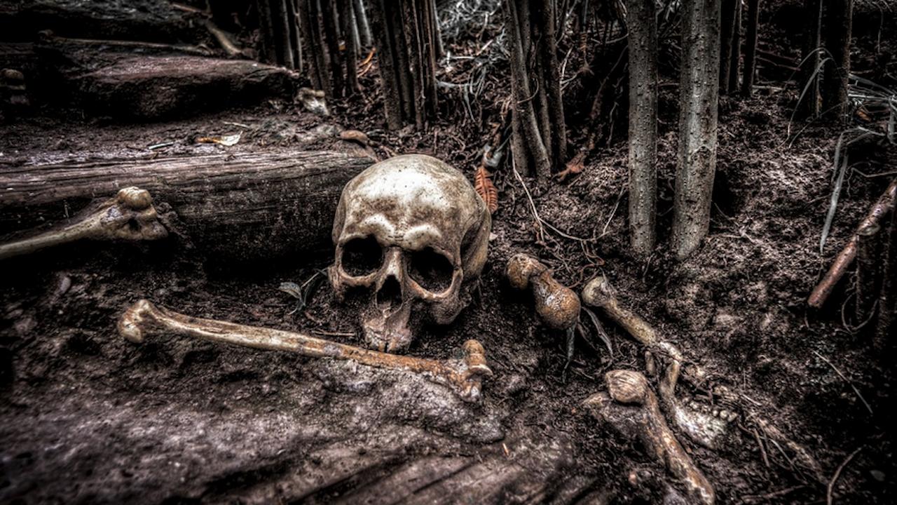 За да прокарат магистрала: В РС Македония изровиха костите на близо 400 български войници