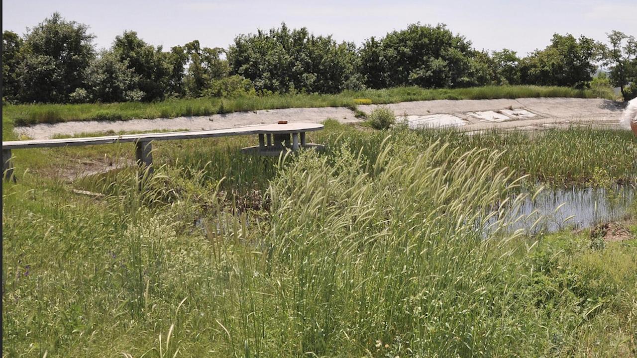 Община Благоевград може да загуби имот от близо 62 декара