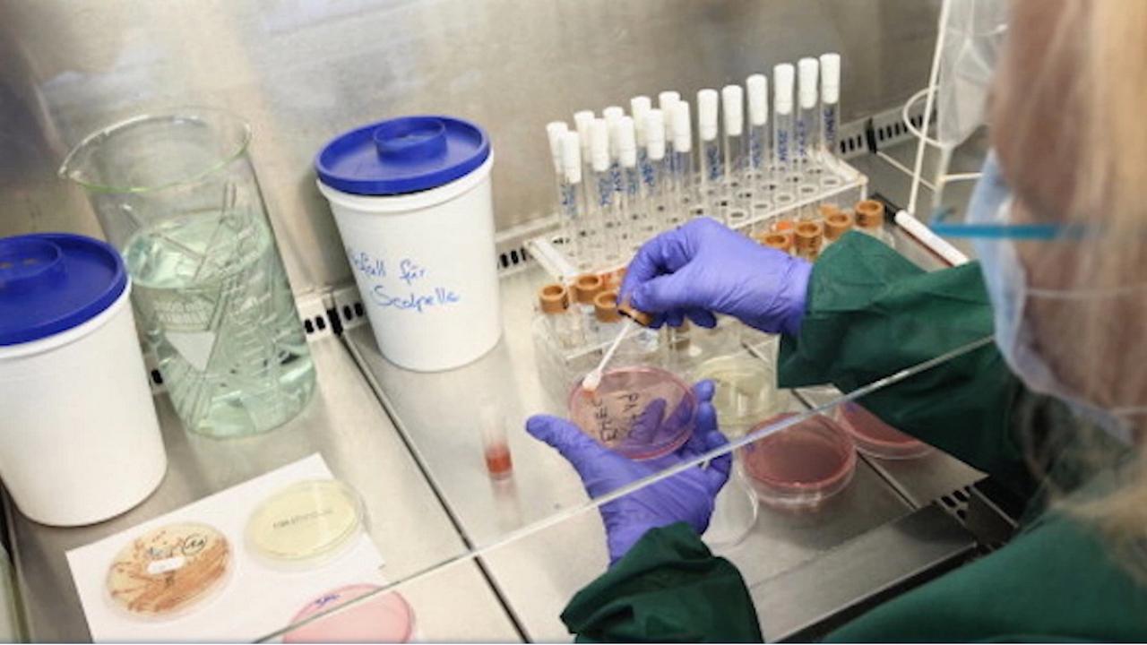 3440 нови случаи на COVID-19 за последните 24 часа у нас