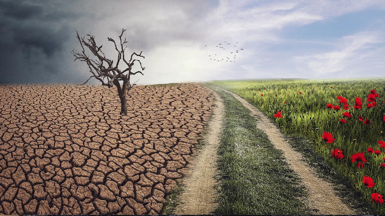 Европейските граждани се вълнуват най-много от климатичните промени и европейската демокрация