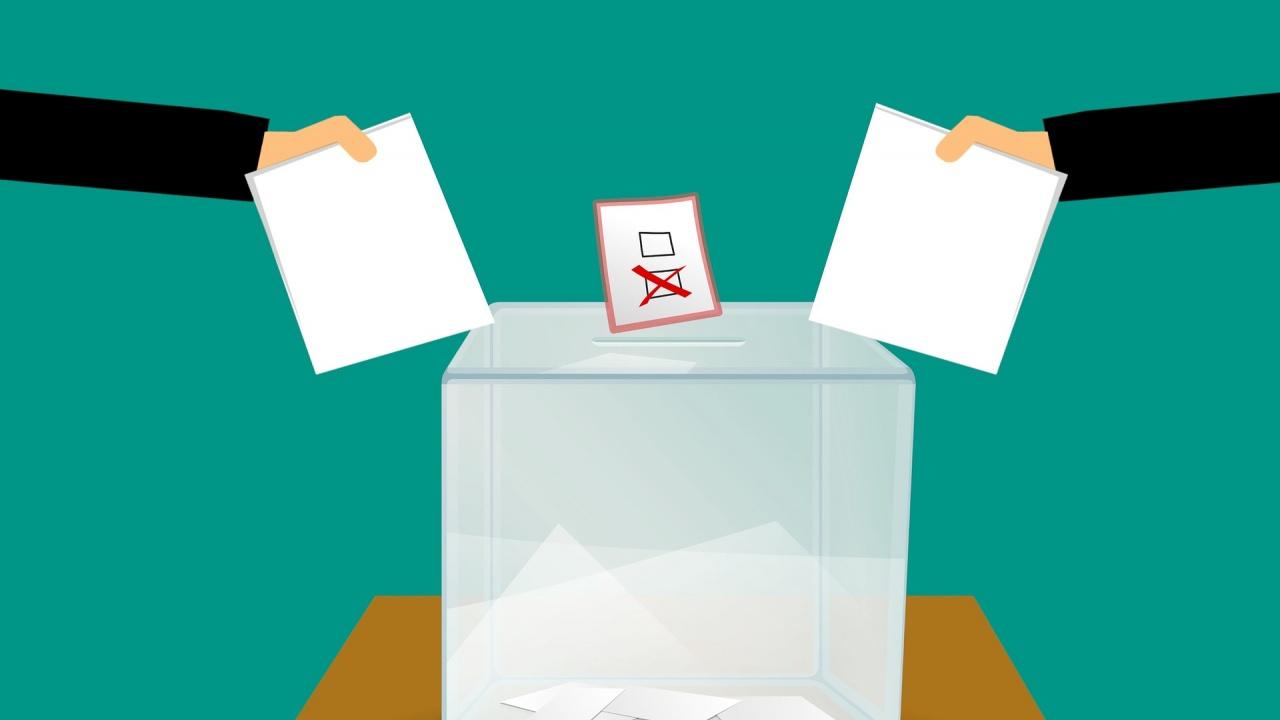 Любомир Аламанов: 21 типа политици, за които да не гласувате