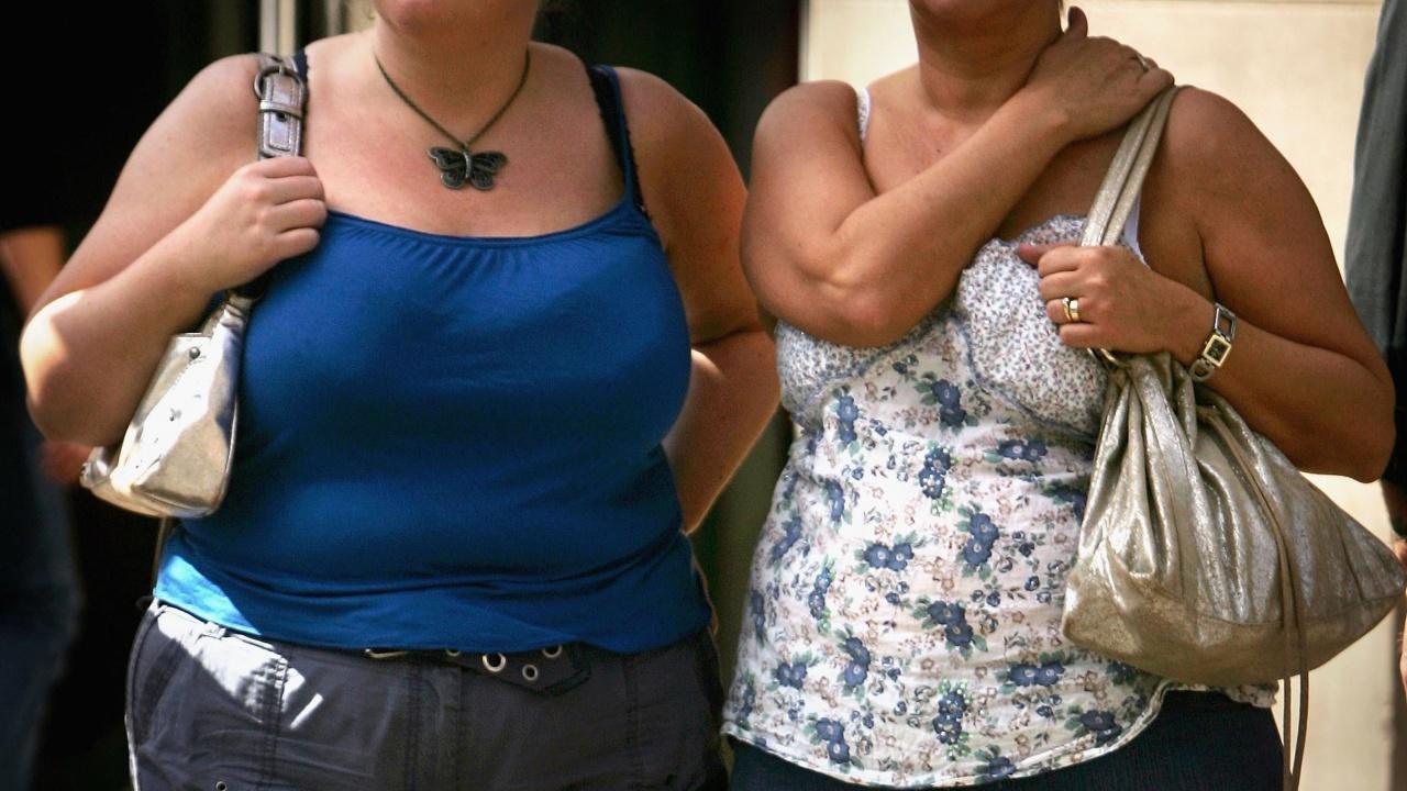Откриха връзка между климатичните промени и затлъстяването