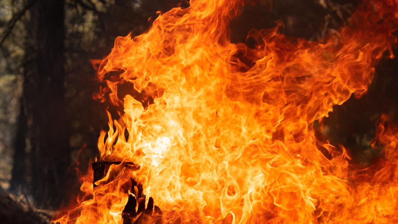 Цех за производство на барут пламна в Русия. Има жертви