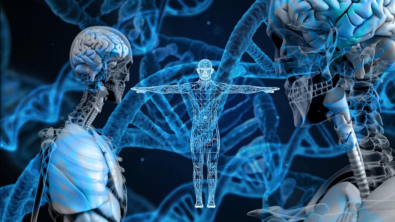 Учени откриха защо се смалява мозъкът на съвременния човек
