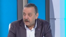 Д-р Кантарджиев за лаймската болест, марсилската треска, кърлежите и пчелите