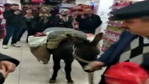 Турци впрегнаха магаре в протест срещу платени найлонови торбички