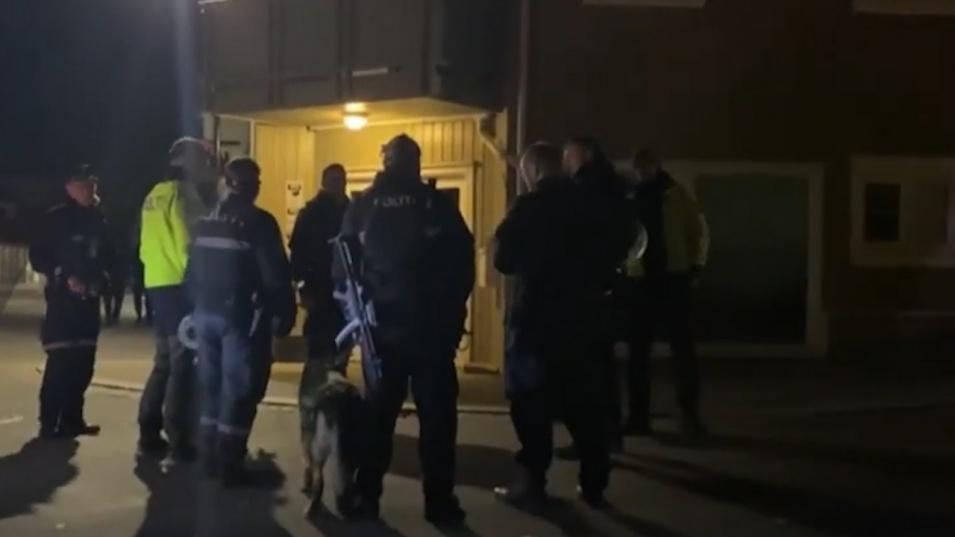 Смъртоносно нападение с лък в Норвегия, няма пострадали българи